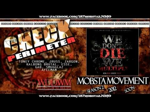 187 MOBSTAZ - CHECK PERIMETER (wddwm)