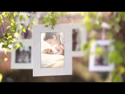 Photo Gallery on a Sunny Afternoon After Effects Template