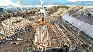 getlinkyoutube.com-Logs to Lumber - An aerial journey through the sawmill