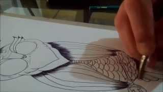 getlinkyoutube.com-Desenho - Coruja