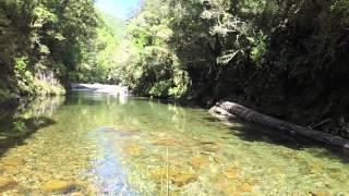 getlinkyoutube.com-Fly Fishing South Island, New Zealand