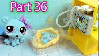 getlinkyoutube.com-LPS Baby Hospital  - Mommies Part 36 Littlest Pet Shop Series Movie LPS Mom Babies