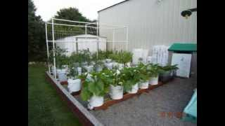 getlinkyoutube.com-Why The Rain Gutter Grow System Is Like No Other Gardening System In The World!