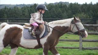 getlinkyoutube.com-3 year old girl starting a journey into the love of horse riding....