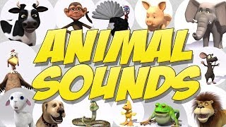 getlinkyoutube.com-Learn Animal Sounds