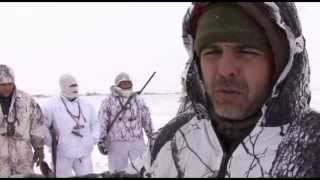 getlinkyoutube.com-Specklebelly Goose Hunting Livada, Bulgaria 2013 - Ivo Georgiev HobbyTv & T&T Calls