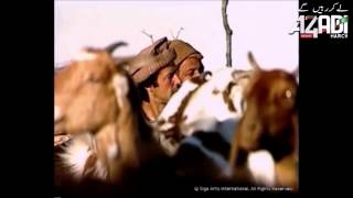 PTI song Pukhtun-Tribute to Imran Khan & PTI Supporters