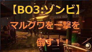 【BO3:ゾンビ】 マルグワを一撃で!!