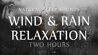 getlinkyoutube.com-Wind and Rain Relaxation Two  Hours Natural Sleep Sounds (White Noise for Sleep, Study, Meditation)
