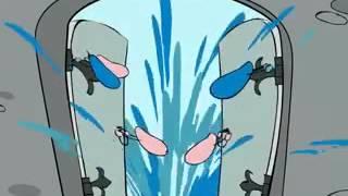 getlinkyoutube.com-правила интимной гигиены мультфильм для девочек