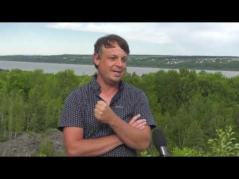 Création d'un comité pour la protection du boisé du Sault-à-la-puce