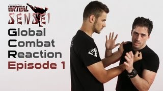 getlinkyoutube.com-Ninjutsu self defense - Ep. 1 - Chest grab and roundhouse kick