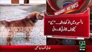 getlinkyoutube.com-Funny Breaking News – Mansehra Anokha Waqie