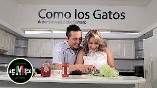 getlinkyoutube.com-Dora Libia - Como los gatos ft. La Trakalosa de Monterrey (Video Oficial)