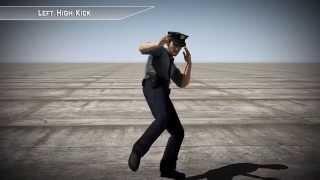 Left High Kick - 3d Motion Capture FBX