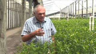 American Farmer Features Pathway Biologic