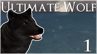 getlinkyoutube.com-A Lost, Lonely Wolf in the Snow • Ultimate Wolf Simulator - Episode #1