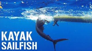 getlinkyoutube.com-Kayak Fishing: 6-FOOT SAILFISH, Kingfish and Big Sharks