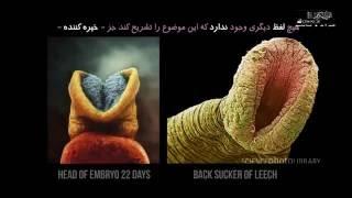 getlinkyoutube.com-معجزه بینظیر قرآن که هیچ بی دینی نتوانسته در مقابل آن دهان بگشاید