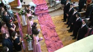 getlinkyoutube.com-Nunta BENI&CRISTINA - Intrarea mirilor - Andrei CANDRIANU - Lusu AGHENITEI si ....