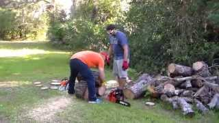 getlinkyoutube.com-Stihl vs Echo - MS271 vs CS590 - Farm Boss vs Timber Wolf