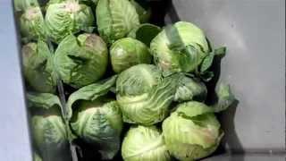 getlinkyoutube.com-Food Waste Grinding Video