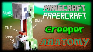 getlinkyoutube.com-The Complete Anatomy of a Creeper : Why do they Explode? (Minecraft Papercraft)