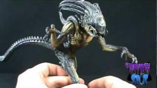 getlinkyoutube.com-Toy Spot - Neca Alien VS Predator: Requeim Predalien figure