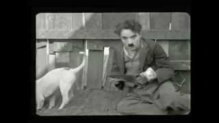 getlinkyoutube.com-Charles Chaplin A Dogs Life subtitulos español pelicula completa 1918   YouTube 1