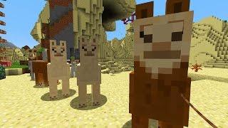 getlinkyoutube.com-5 Dinge in Minecraft ... die du noch NICHT wusstest! #135