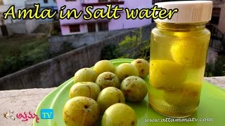 getlinkyoutube.com-How to Preserve Amla in salt water(ఉసిరికాయలు నిల్వ చేయుట ) .:: by Attamma TV ::.