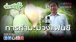 getlinkyoutube.com-ปราชญ์แม่โจ้ : การทำมะม่วงแฟนซี โดย ลุงแอ๊ด พิชัย สมบูรณ์วงศ์