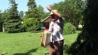 Новинки в пчеловодстве Альгирдаса Амшеюса из Литвы