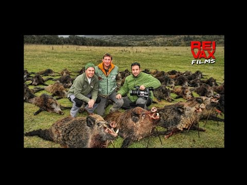 ADVERTISING TRAILER - COURSILHAC HUNTING ESTATE - Produced by REIVAX FILMS - ENGLISH VERSION