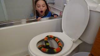 """getlinkyoutube.com-Giant Snake In Toilet vs Plunger Girl """"Victoria Saves Annabelle From Bite"""" Toy Freaks Attack"""
