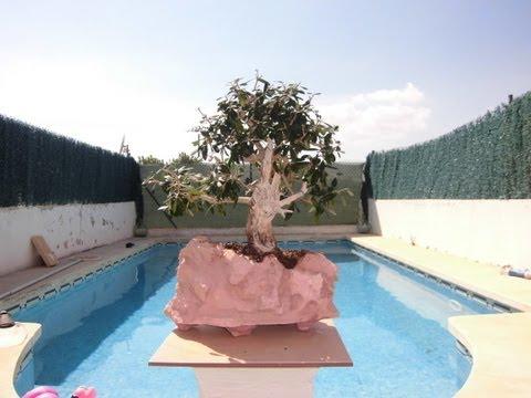 Hacer una maceta rústica de piedra para bonsai de JM-QJ