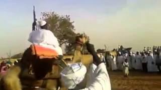 getlinkyoutube.com-زواج بدو السودان ... دي العركه ام دوي وقصدير