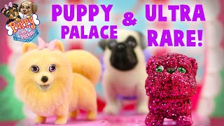 Pretty Pet Palace Puppy In My Pocket Playset with Ultra Rare Glitter Dog Toys!