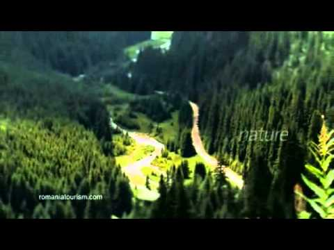 Romania, Explore the Carpathian garden) - spot natura