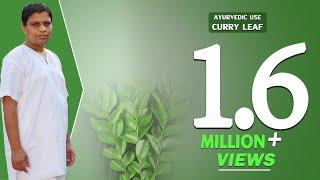 getlinkyoutube.com-Ayurvedic use Curry Leaf  (Kadipatta)