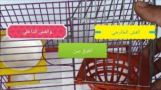 getlinkyoutube.com-الفرق بين العش الخارجي والداخلي للطيور