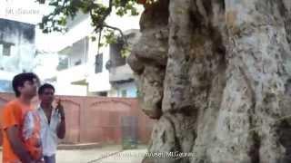 getlinkyoutube.com-Krishna And Kaliya Naag Place, Real Story (Kaliya Ghat) Vrindavan