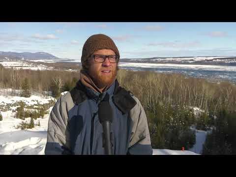 Château-Richer : une pétition pour la protection du boisé du Sault à la puce
