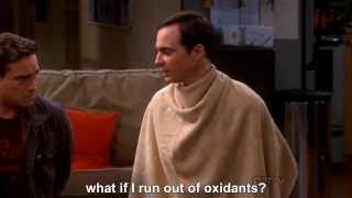 getlinkyoutube.com-The Big Bang Theory - Sheldon and the blueberry in his nose--Subtitled