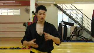 getlinkyoutube.com-THE_REBEL Martial Arts Fight  Demonstration  (Johnny Nguyen) 2012 HD