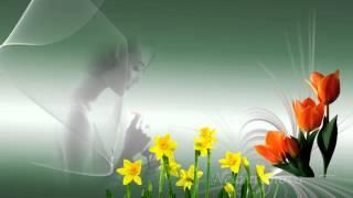 getlinkyoutube.com-Футажи ProShow Producer Красивые Цветы и Нежность