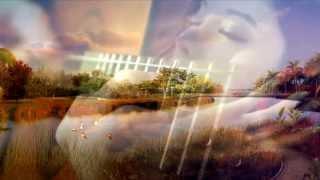 getlinkyoutube.com-Mandarin Song - You Mei You Ren Gao Su Ni - Chen Chu Sheng