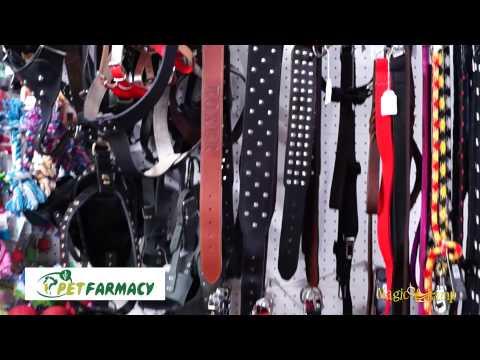 Pet Farmacy   Pet Shop Αιγάλεω,Τροφές,Αξεσουάρ,γάτες,σκυλιά,τρωκτικά,πτηνά,ψάρια,φάρμακα