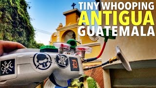 getlinkyoutube.com-Tiny Whooping In Beautiful Antigua, Guatemala