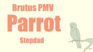 getlinkyoutube.com-Parrot PMV